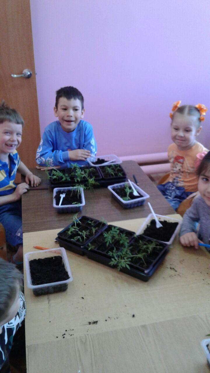 19 марта и 23 апреля в детском саду № 38 г. Солнечногорска прошли практические занятия по экологии Навстречу весне